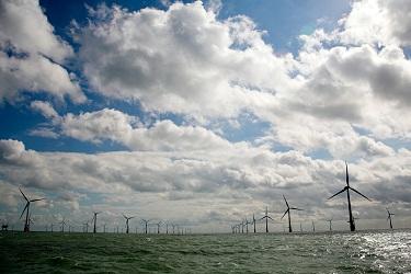 חוות הרוח הימית במבט מרחוק - צילום: Vattenfall