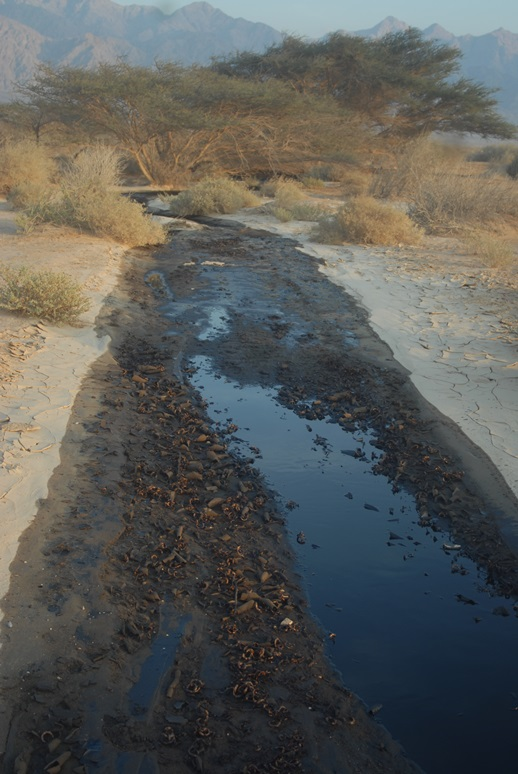 דליפת הנפט בערבה. צילום: תשתיות