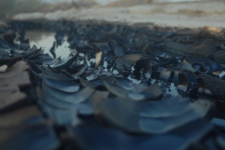 דליפת הנפט בערבה. צילום: ארנון מעוז, תשתיות