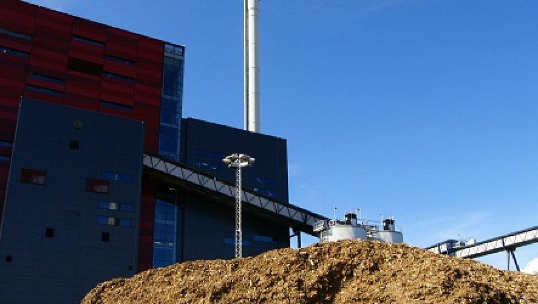 חברת החשמל מתכננת שילוב ביומסה בתחנות כוח פחמיות