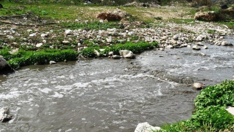 """החברה להגנת הטבע הגישה עתירה לבג""""ץ נגד שר הביטחון"""
