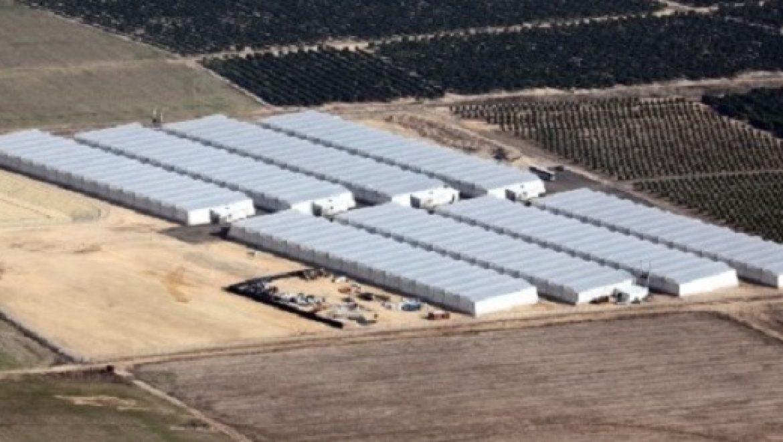 הגז הטבעי מגיע גם לחקלאות: מערכות חימום לשימוש בגז טבעי הותקנו בחממות בגדרות