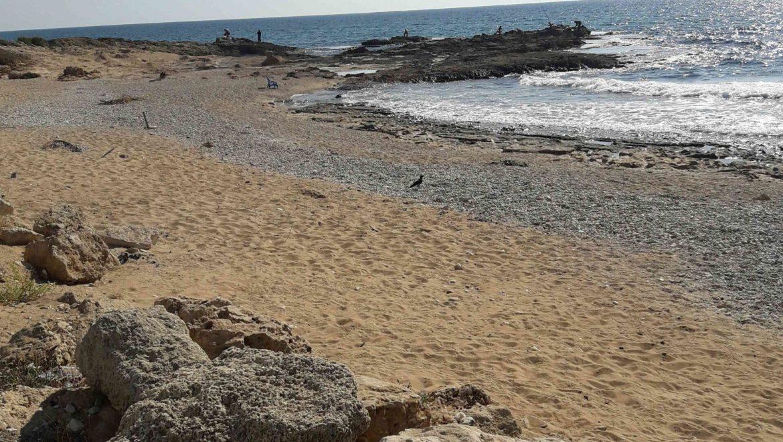 מדד חוף נקי: כ-70% מהחופים נמצאו נקיים לעומת 61% לפני שנה