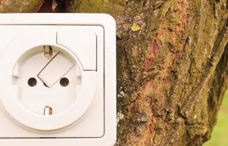 Primus GE פיתחה מערכת לייצור דלקים מפסולת עץ