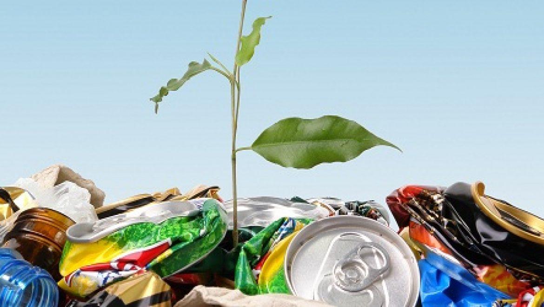 סיירת מיחזור חדשה תעודד איסוף בקבוקי פלסטיק במהלך החג