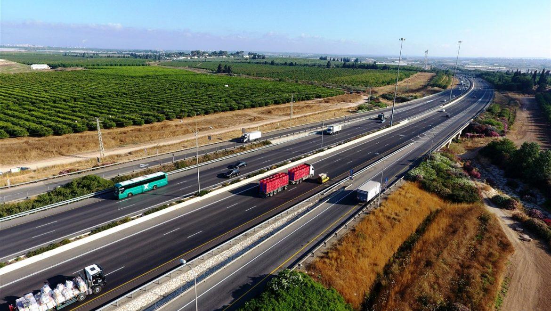 חשיפה: רשימת הכבישים האדומים – סכנה לחיות הבר בישראל