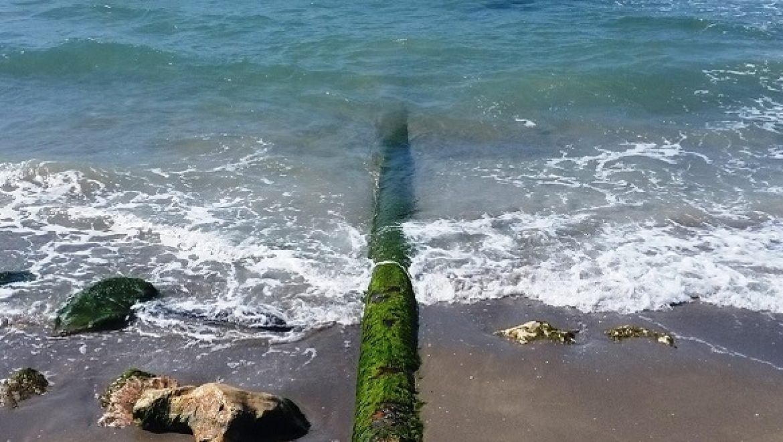 """עקב פגיעה בסביבה הימית: תש""""ן תפנה צינורות נפט תת-ימיים מקרקעית מפרץ חיפה"""