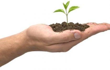 המשרד להגנת הסביבה מפרסם את התוכנית הלאומית למגוון הביולוגי