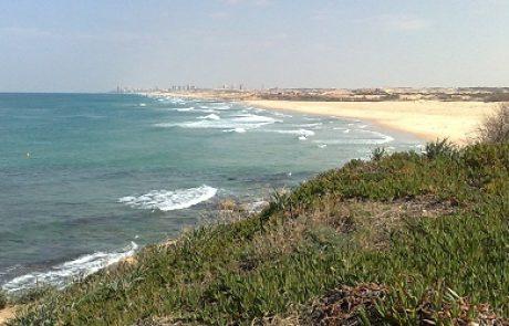 ארגוני סביבה לשר האוצר: עזור לנו להציל את חוף פלמחים