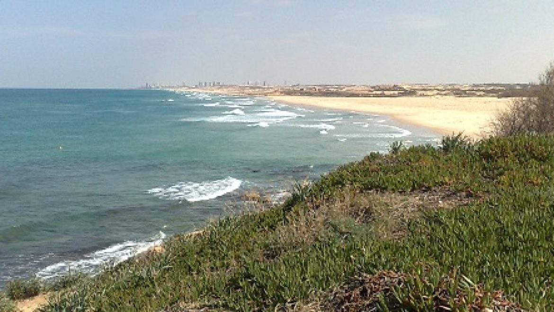 """ניצחון לחוף פלמחים: ביהמ""""ש דחה את עתירת היזמים לבניית כפר הנופש בחוף"""