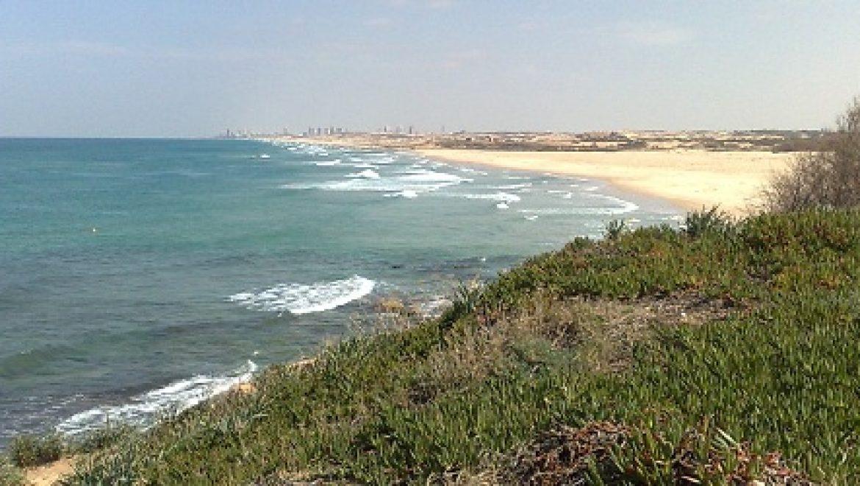 מבקר המדינה: מנהל מקרקעי ישראל מייצר פגיעה בחופי ישראל