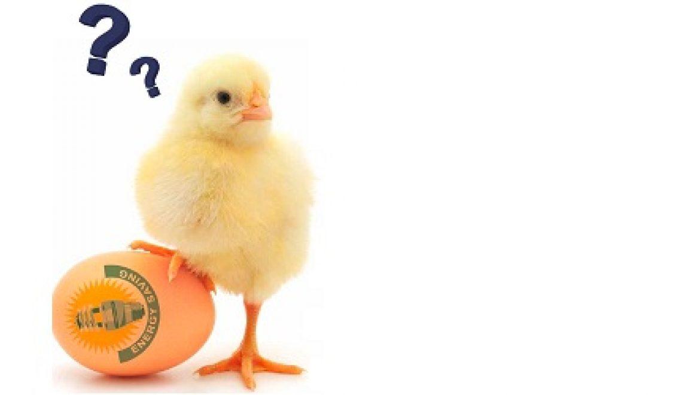 לייצר או לחסוך? דילמת הביצה והתרנגולת בדרך לעצמאות אנרגטית
