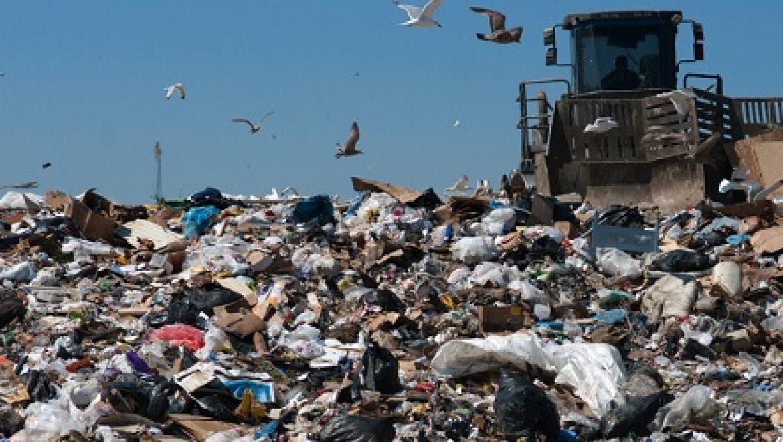 המשרד להגנת הסביבה: נפרק את המונופול בשוק הפסולת העירונית
