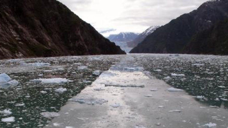 """הקרחונים נעלמים משמורות טבע בארה""""ב"""