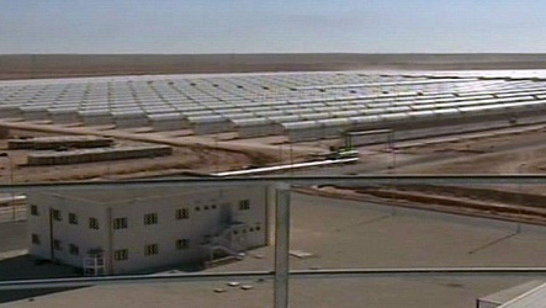 יינגלי תקים חוות PV באלג'יריה, בהספק של 233 MW