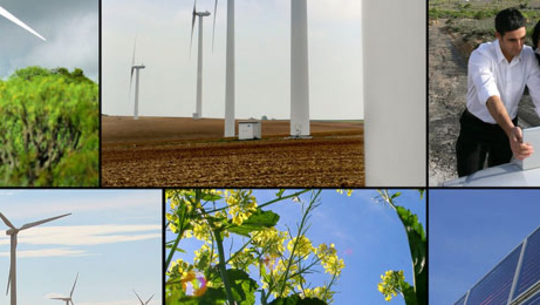 דעה: שחיקת הסובסידיות מוכיחה שתעשיית האנרגיה המתחדשת מתבגרת