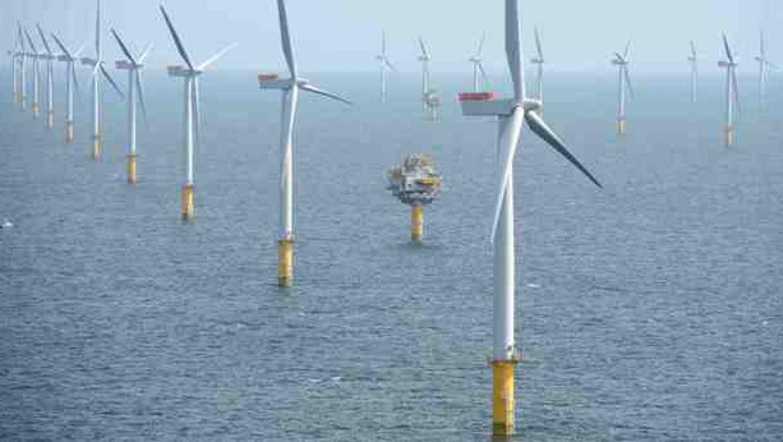 שנת שיא לחוות הרוח הימיות בעולם