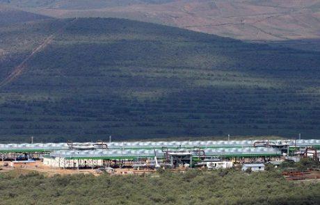 """אורמת מקימה תחנות כוח בקניה ובארה""""ב"""