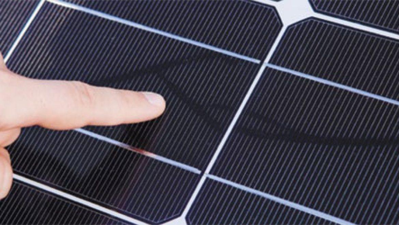 """""""עקבות חלזונות"""" מסתוריים מתפשטים בשדות סולאריים בעולם"""