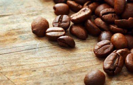 מחקר חדש מעלה אפשרות להפקת ביודיזל מפולי קפה משומשים