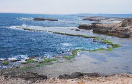 """יישובי חוף הכרמל הגישו בג""""ץ נגד הקמת תחנת הגז בחוף דור"""