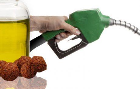 פיתוח ישראלי חדש: דלק טבעי משמן פלאפל משומש