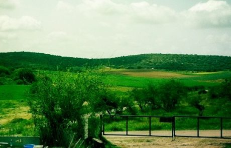 פצלי השמן בעמק האלה: הוגשה בקשת הפיילוט למשרד הפנים