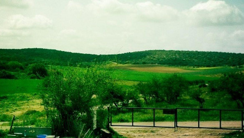 פיילוט פצלי השמן בעמק האלה יעבור לדיון בועדה המחוזית לתכנון ובניה