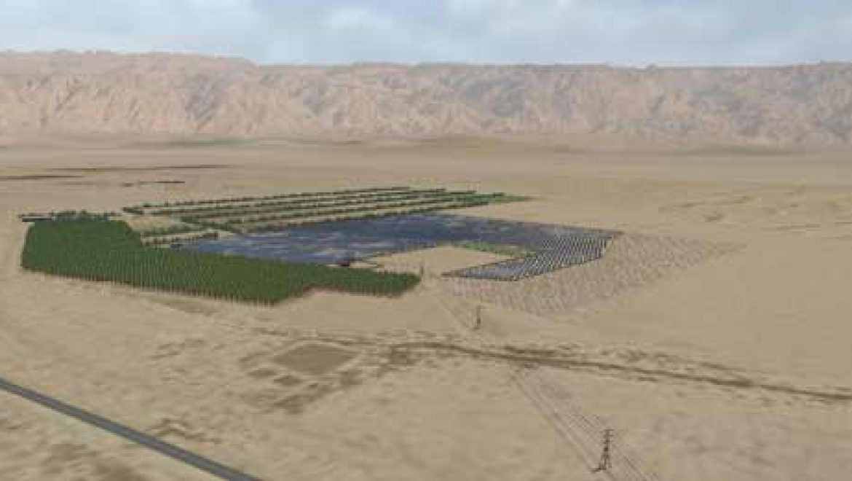 בלעדי: מינהל התכנון אישר לערבה פאוור שדה סולארי בהיקף 40 MW