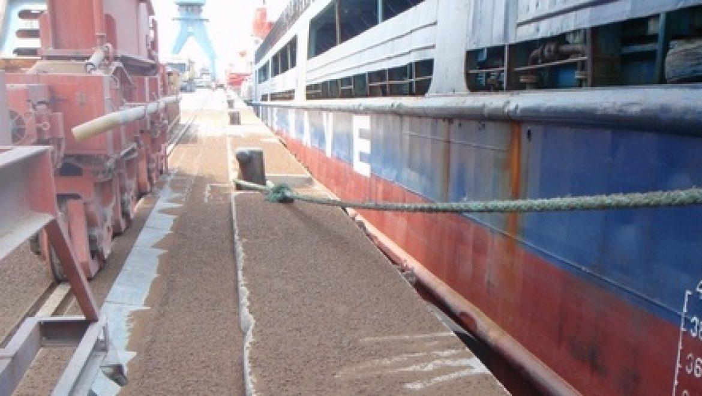 המשרד להגנת הסביבה פתח בחקירה פלילית נגד חברת נמל חיפה בעקבות זיהום הים
