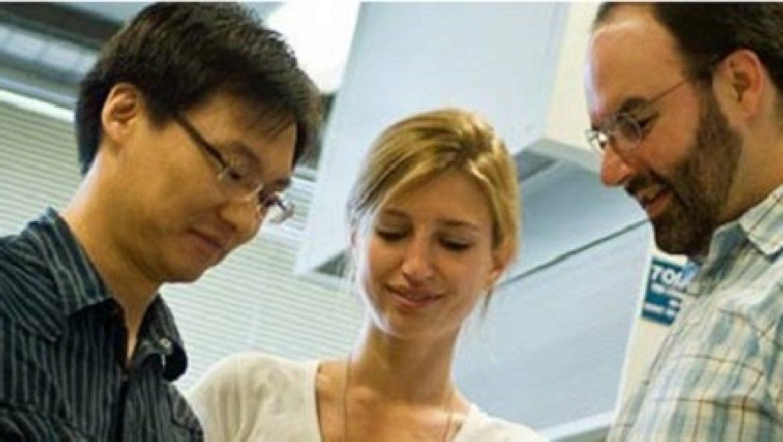 חוקרי MIT מנסים להגדיל את נצילות התא הסולארי פי 100 בעזרת צינורות פחמן ננומטריים