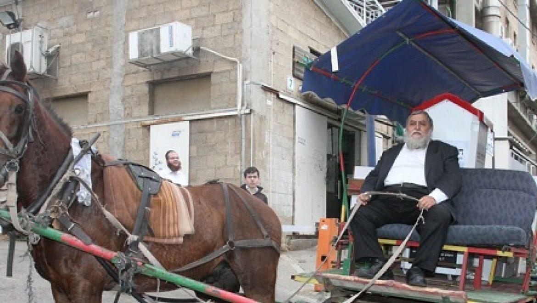 בעקבות העלייה במחירי הדלק: הסוסים נרתמים לחלוקת מוצרי מזון לנזקקים