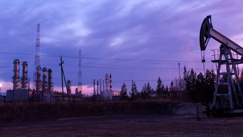 גבעות עולם הפסידה מעל 10 מיליון דולר מתחילת השנה