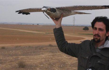 """צפרים, היזהרו מחיקויים, """"הרובונץ"""" – דחליל אקולוגי מוטס נגד ציפורים"""