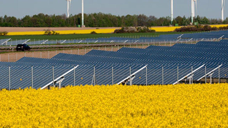 תחזית גלובאלית לתעשייה הסולארית ב- 2013