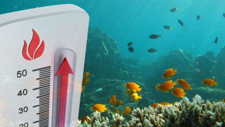 משרדי המדע של ישראל וגרמניה יממנו מחקר אודות השפעת ההתחממות הגלובלית על אוקיינוסים