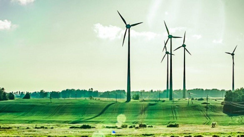 המשרד להגנת הסביבה: גורמים כלכליים דוחפים את טורבינות הרוח קדימה ואת המשרד הצידה