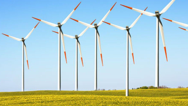 """רשות החשמל צפויה להציג היום: הסדרת רוח ב-38 אגורות בלבד לקוט""""ש"""